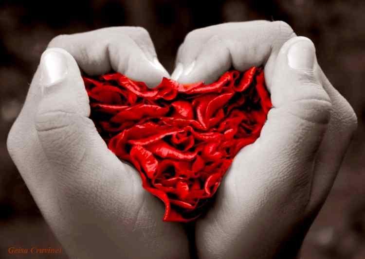 amarres de amor en Toluca de Lerdo